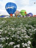 2616 Lorraine Mondial Air Ballons 2011 - IMG_8618_DxO Pbase.jpg