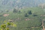 2694 - South India 2 weeks trip - 2 semaines en Inde du sud - IMG_0982_DxO WEB.jpg