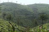2728 - South India 2 weeks trip - 2 semaines en Inde du sud - IMG_1018_DxO WEB.jpg