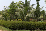 2740 - South India 2 weeks trip - 2 semaines en Inde du sud - IMG_1032_DxO WEB.jpg