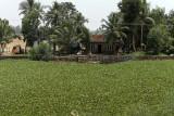 2744 - South India 2 weeks trip - 2 semaines en Inde du sud - IMG_1036_DxO WEB.jpg