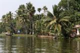 2817 - South India 2 weeks trip - 2 semaines en Inde du sud - IMG_1116_DxO WEB.jpg