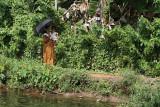 2831 - South India 2 weeks trip - 2 semaines en Inde du sud - IMG_1130_DxO WEB.jpg