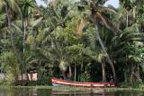 2853 - South India 2 weeks trip - 2 semaines en Inde du sud - IMG_1152_DxO WEB.jpg