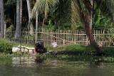 2855 - South India 2 weeks trip - 2 semaines en Inde du sud - IMG_1154_DxO WEB.jpg