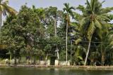 2881 - South India 2 weeks trip - 2 semaines en Inde du sud - IMG_1180_DxO WEB.jpg