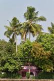 2882 - South India 2 weeks trip - 2 semaines en Inde du sud - IMG_1181_DxO WEB.jpg