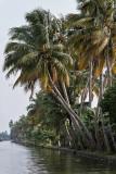2965 - South India 2 weeks trip - 2 semaines en Inde du sud - IMG_1271_DxO WEB.jpg