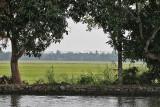 2987 - South India 2 weeks trip - 2 semaines en Inde du sud - IMG_1295_DxO WEB.jpg