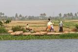 2993 - South India 2 weeks trip - 2 semaines en Inde du sud - IMG_1301_DxO WEB.jpg