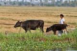 2999 - South India 2 weeks trip - 2 semaines en Inde du sud - IMG_1308_DxO WEB.jpg