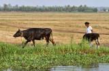 3000 - South India 2 weeks trip - 2 semaines en Inde du sud - IMG_1309_DxO WEB.jpg