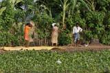 3005 - South India 2 weeks trip - 2 semaines en Inde du sud - IMG_1314_DxO WEB.jpg