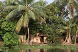 3008 - South India 2 weeks trip - 2 semaines en Inde du sud - IMG_1317_DxO WEB.jpg