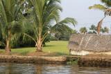 3022 - South India 2 weeks trip - 2 semaines en Inde du sud - IMG_1331_DxO WEB.jpg