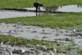 3868 - South India 2 weeks trip - 2 semaines en Inde du sud - IMG_2240_DxO WEB.jpg