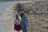 3886 - South India 2 weeks trip - 2 semaines en Inde du sud - IMG_2261_DxO WEB.jpg