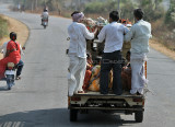 3890 - South India 2 weeks trip - 2 semaines en Inde du sud - IMG_2268_DxO WEB.jpg