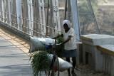 3894 - South India 2 weeks trip - 2 semaines en Inde du sud - IMG_2272_DxO WEB.jpg