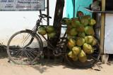 3910 - South India 2 weeks trip - 2 semaines en Inde du sud - IMG_2293_DxO WEB.jpg