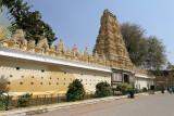 4045 - South India 2 weeks trip - 2 semaines en Inde du sud - IMG_2436_DxO WEB.jpg