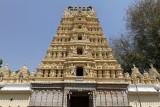 4047 - South India 2 weeks trip - 2 semaines en Inde du sud - IMG_2438_DxO WEB.jpg