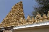 4049 - South India 2 weeks trip - 2 semaines en Inde du sud - IMG_2440_DxO WEB.jpg