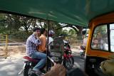 4053 - South India 2 weeks trip - 2 semaines en Inde du sud - IMG_2444_DxO WEB.jpg