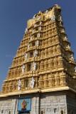 4168 - South India 2 weeks trip - 2 semaines en Inde du sud - IMG_2561_DxO WEB.jpg