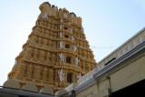4193 - South India 2 weeks trip - 2 semaines en Inde du sud - IMG_2586_DxO WEB.jpg