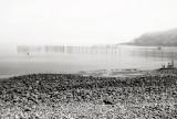 Fog and Weir, Gullivers Cove, Nova Scotia