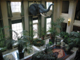 The Conservatory, Eastman House, Rochester, New York