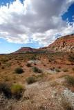 Road Scene, Arizona