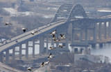 American White Pelicans - flying over the Blotnik Bridge - Duluth, MN