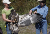 Debbie and Karen with the Bald Eagle