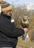 Gail with the Rough-legged Hawk