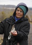 Judy with the Northern Shrike, that bob adopted for her!