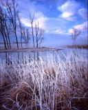Glacial Park, McHenry County, IL