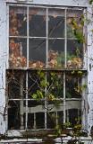 Window...