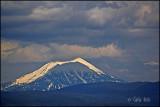 Mt Pitt