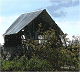 Old Barn....hanging in there...