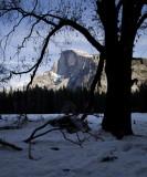 W-2011-02-09-0716- Yosemite -Photo Alain Trinckvel.jpg