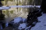 W-2011-02-09-0647- Yosemite -Photo Alain Trinckvel.jpg