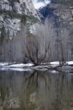 W-2011-02-09-0476- Yosemite -Photo Alain Trinckvel.jpg