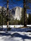 W-2011-02-09-0239- Yosemite -Photo Alain Trinckvel.jpg