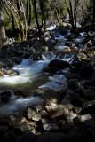 W-2011-02-09-0262- Yosemite -Photo Alain Trinckvel.jpg