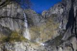 W-2011-02-09-0604- Yosemite -Photo Alain Trinckvel.jpg