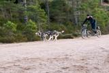 25th Husky Race
