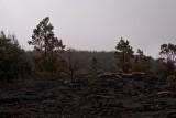 Lava Remains