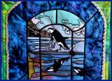Orca Window Close up.JPG